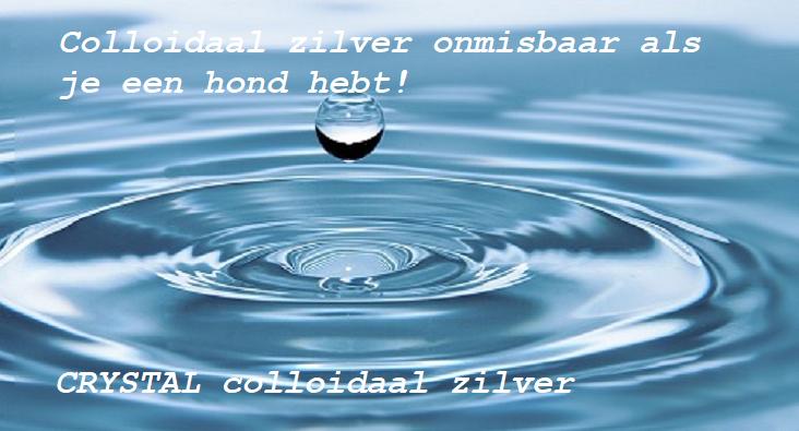 Colloïdaal zilver werkt